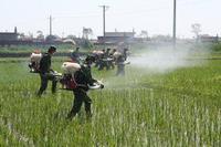 農業有害生物防製現場